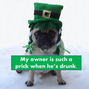 funny st.patrick's day jokes
