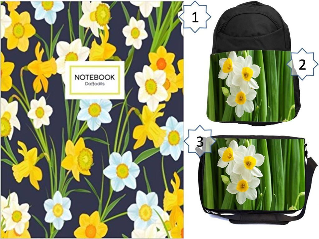 Daffodil gifts for students